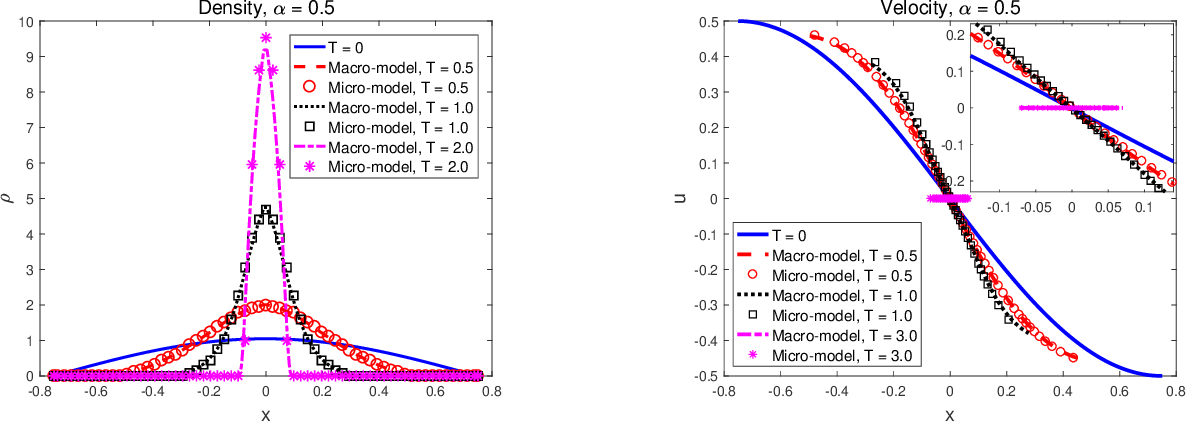 Figure 3 for Nonlocal flocking dynamics: Learning the fractional order of PDEs from particle simulations