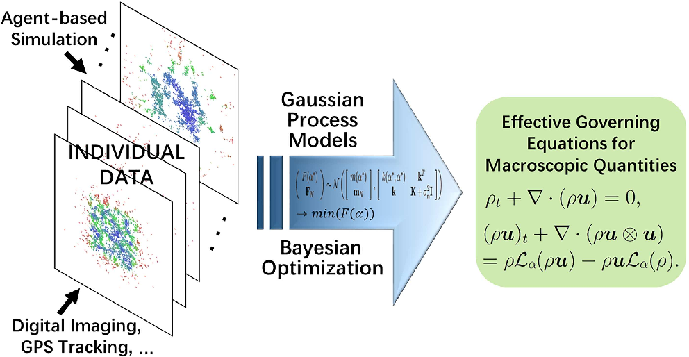 Figure 1 for Nonlocal flocking dynamics: Learning the fractional order of PDEs from particle simulations