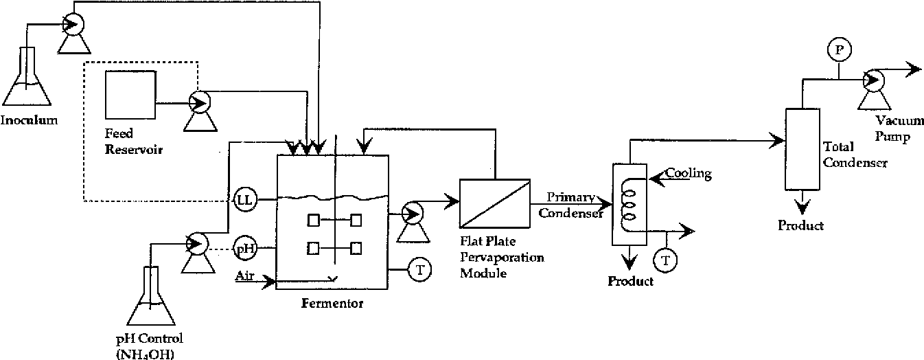 Ethanol Production In A Continuous Fermentationmembrane