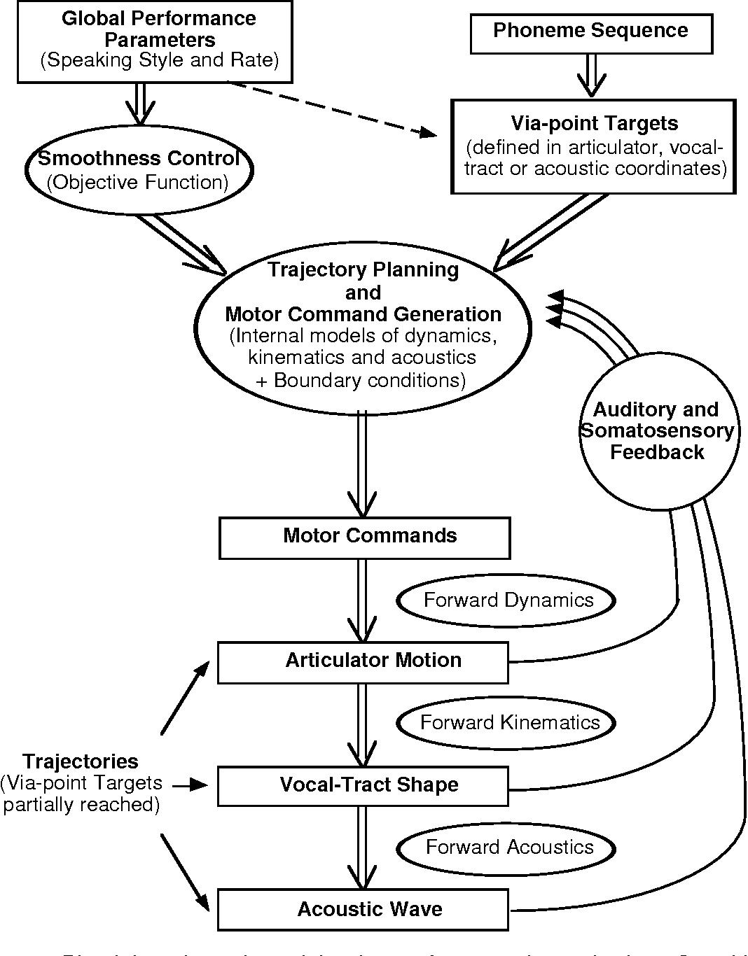 the dynamics of audiovisual behavior in speech semantic scholar Oral Cavity and Pharynx