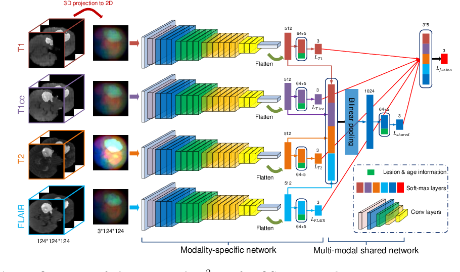 Figure 3 for M2Net: Multi-modal Multi-channel Network for Overall Survival Time Prediction of Brain Tumor Patients