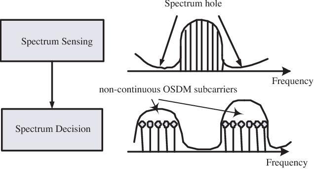 Fig. 5. Conceptual spectrum of non-continuous OSDM.