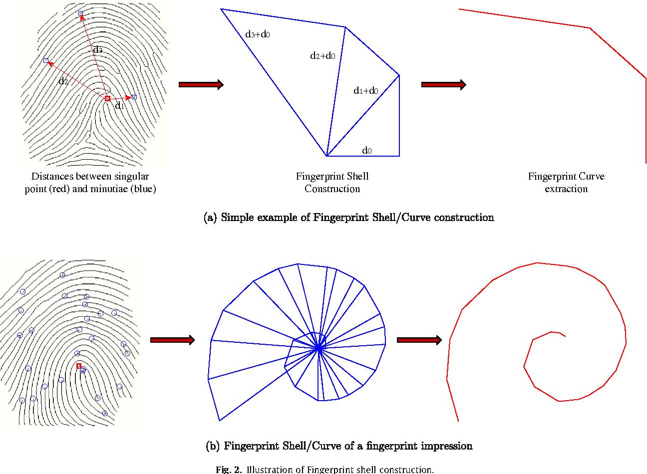 Fingerprint Shell Secure Representation Of Fingerprint Template