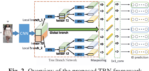 Figure 3 for Pedestrian re-identification based on Tree branch network with local and global learning