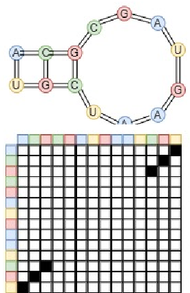 Figure 1 for Classification of Long Noncoding RNA Elements Using Deep Convolutional Neural Networks and Siamese Networks