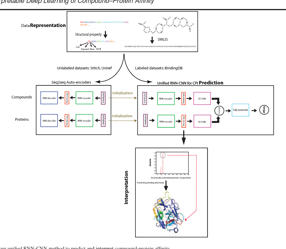 Figure 1 for DeepAffinity: Interpretable Deep Learning of Compound-Protein Affinity through Unified Recurrent and Convolutional Neural Networks