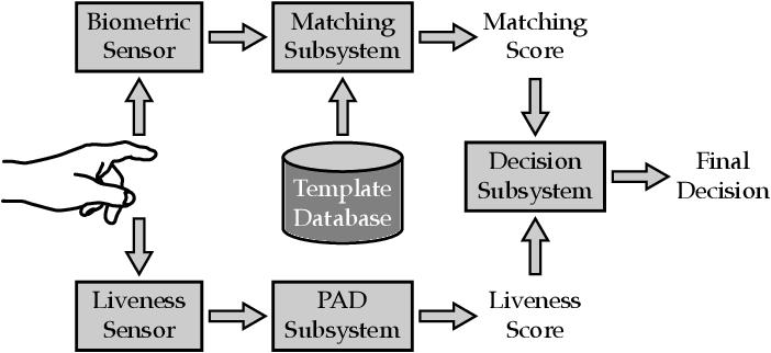 Figure 1 for Multi-Modal Fingerprint Presentation Attack Detection: Evaluation On A New Dataset