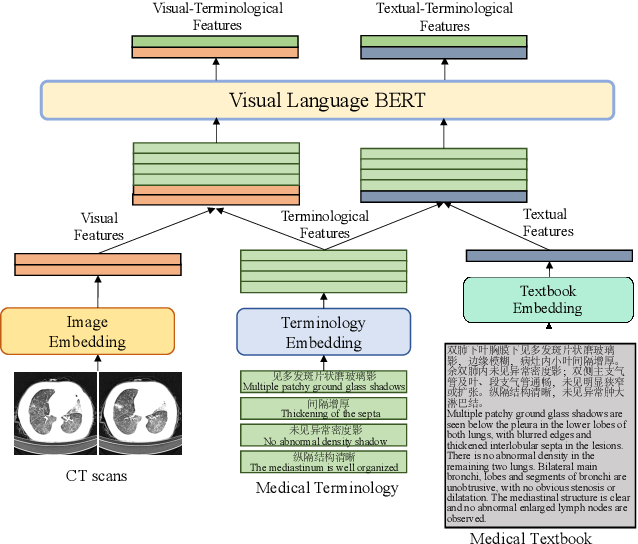 Figure 4 for Medical-VLBERT: Medical Visual Language BERT for COVID-19 CT Report Generation With Alternate Learning