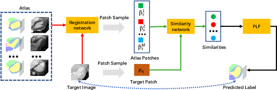 Figure 1 for Cross-Modality Multi-Atlas Segmentation Using Deep Neural Networks