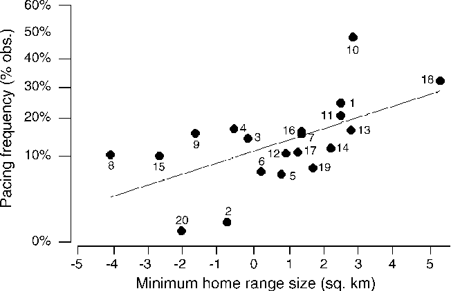 Fig. 1. Minimum home-range size (accounting for body size) and median % pacing frequency in affected individuals. Stereotypy data was arcsine transformed but units on the y-axis are given in the raw form for clarity. Species are labelled as follows: (1) Acinonyx jubatus; (2) Alopex lagopus; (3) Caracal caracal; (4) Leopardus pardalis; (5) Lynx canadensis; (6) Lynx lynx; (7) Melursus ursinus; (8) Mustela vison; (9) Oncifelis geoffroyi; (10) Panthera leo; (11) Panthera onca (12) Panthera pardus; (13) Panthera tigris; (14) Puma concolor; (15) Suricata suricatta; (16) Ursus americanus; (17) Ursus arctos; (18) Ursus maritimus; (19) Ursus thibetanus; (20) Vulpes vulpes.