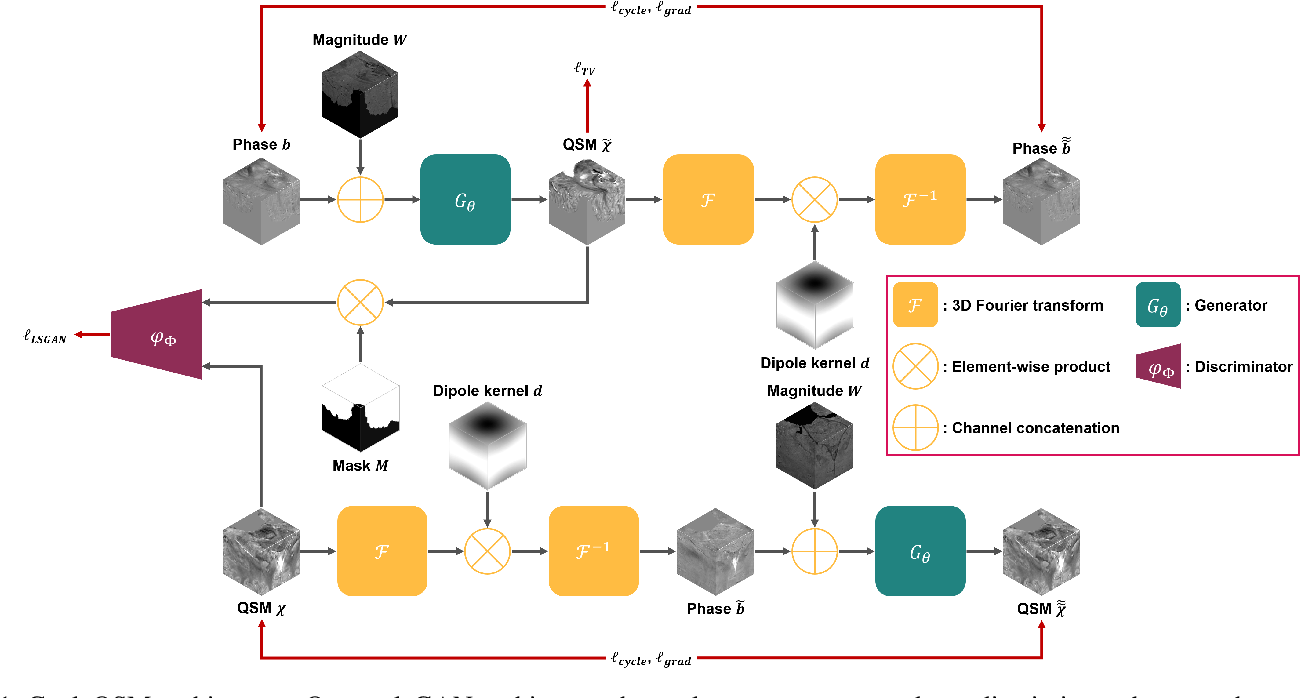 Figure 1 for CycleQSM: Unsupervised QSM Deep Learning using Physics-Informed CycleGAN