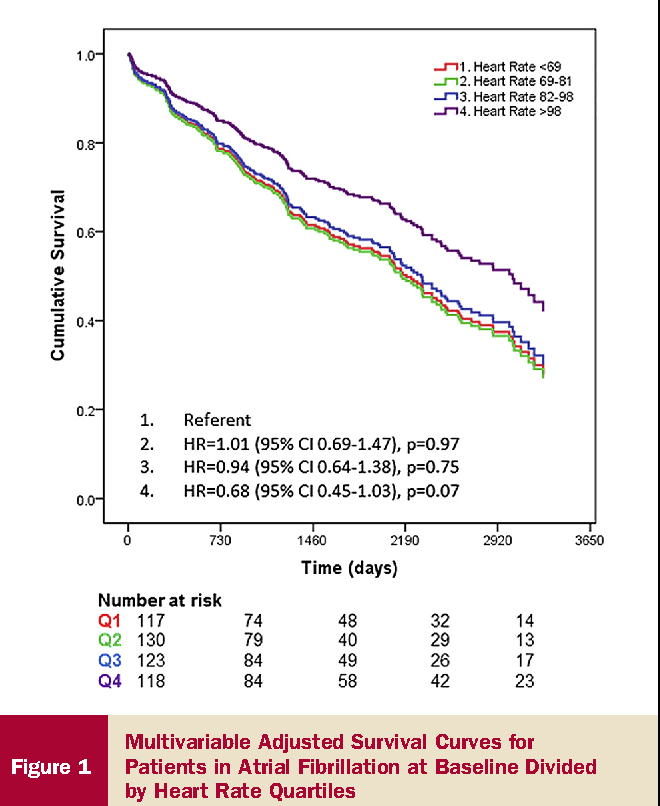 Figure 1 Multivariable Adjusted Survival Curves for Patients in Atrial Fibrillation at Baseline Divided by Heart Rate Quartiles