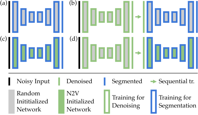 Figure 1 for Leveraging Self-supervised Denoising for Image Segmentation