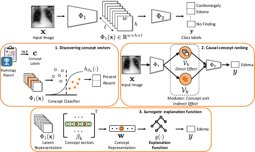 Figure 1 for Using Causal Analysis for Conceptual Deep Learning Explanation