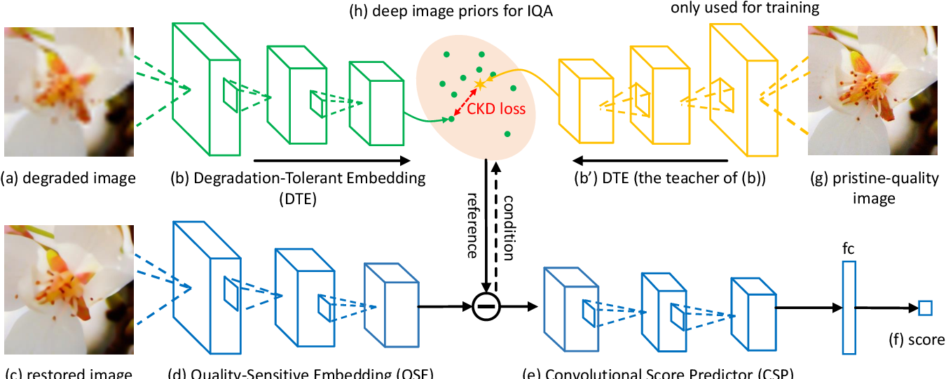 Figure 3 for Learning Conditional Knowledge Distillation for Degraded-Reference Image Quality Assessment