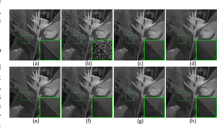 Figure 2 for Non-Convex Weighted Lp Minimization based Group Sparse Representation Framework for Image Denoising