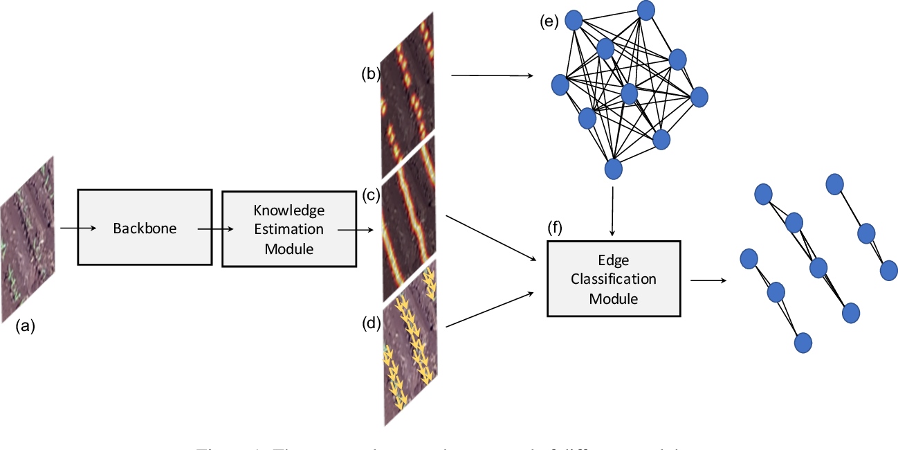 Figure 1 for A Deep Learning Approach Based on Graphs to Detect Plantation Lines