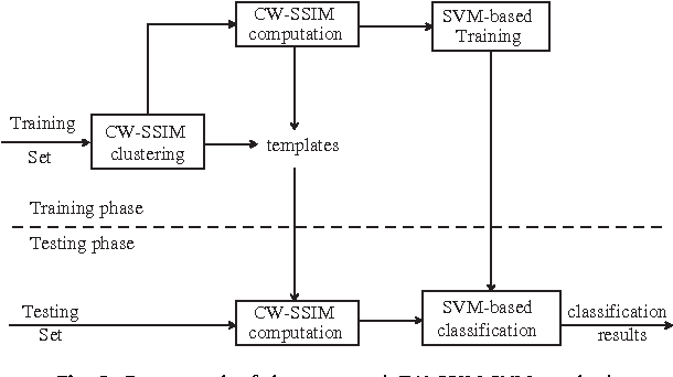 Image classification based on complex wavelet structural