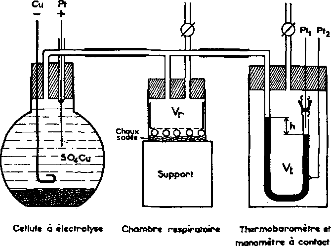 FIG. 1. Diagramme du respirom~tre.