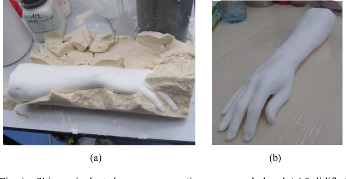 Fig. 4. Skin-equivalent phantom representing an arm and a hand. (a) Solidified phantom in an alginate mold. (b) Final phantom several hours after fabrication.