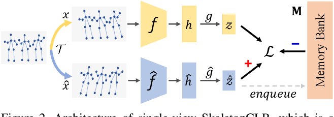 Figure 3 for 3D Human Action Representation Learning via Cross-View Consistency Pursuit