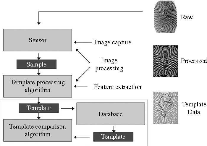 Figure 2 from Biometrics in banking security: a case study