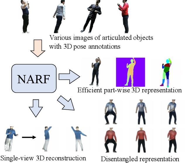 Figure 1 for Neural Articulated Radiance Field