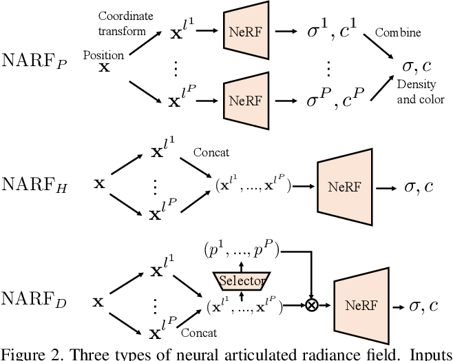 Figure 3 for Neural Articulated Radiance Field