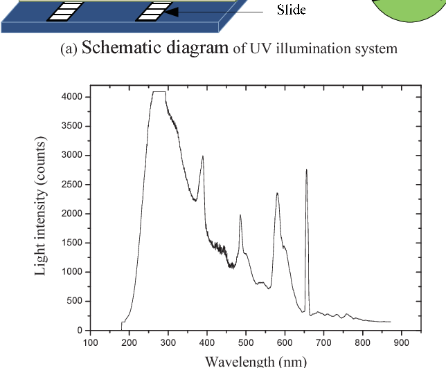 Figure 2. UV illumination system