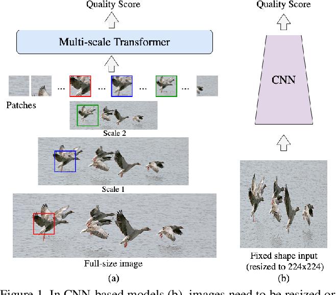 Figure 1 for MUSIQ: Multi-scale Image Quality Transformer
