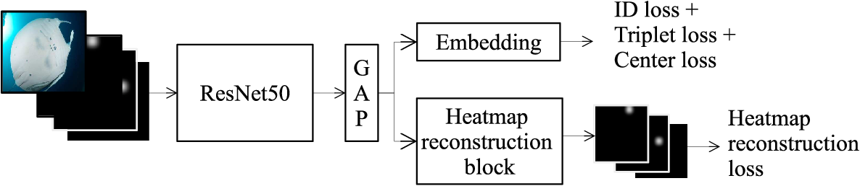 Figure 2 for Learning landmark guided embeddings for animal re-identification