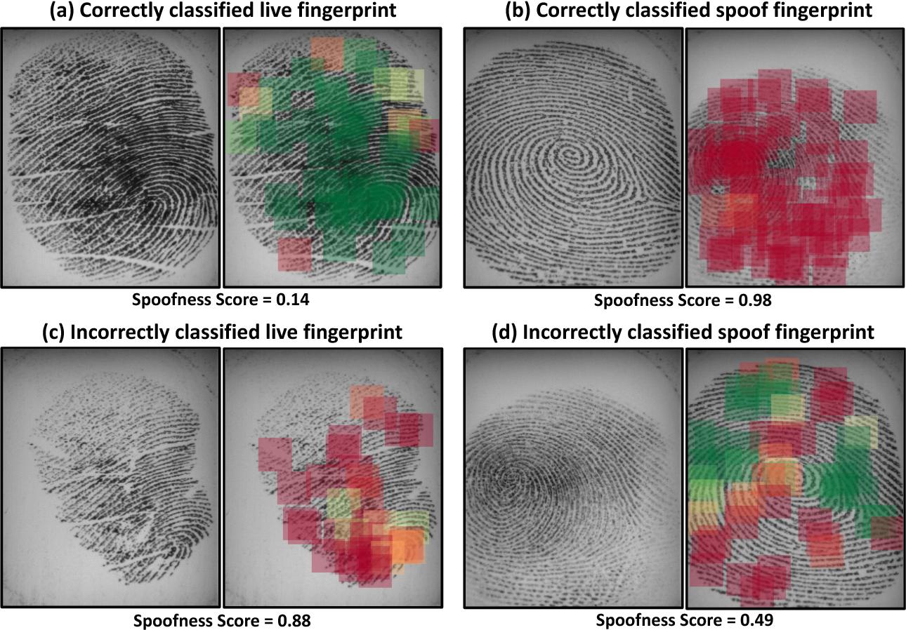 Figure 2 for Fingerprint Spoof Buster