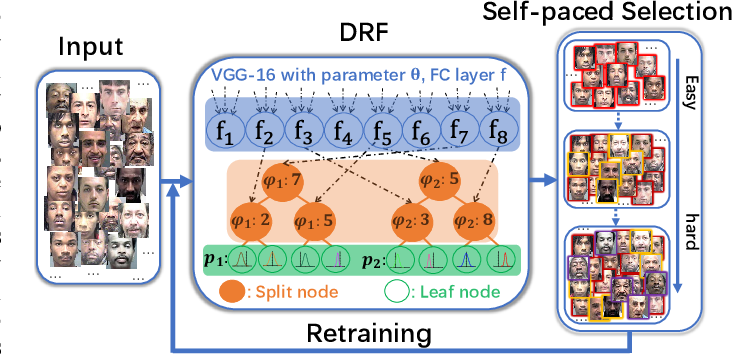 Figure 1 for Self-Paced Deep Regression Forests for Facial Age Estimation