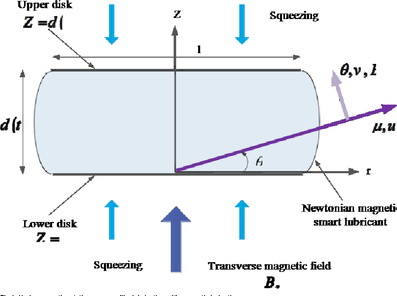 Fig 1. Hydromagnetic rotating squeeze film lubrication with magnetic induction.