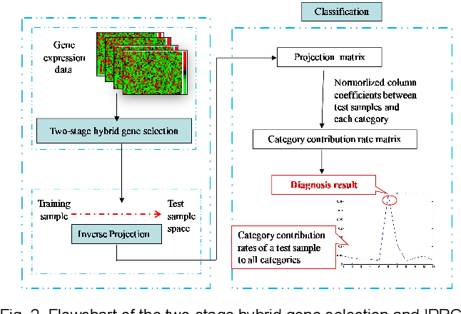 Figure 3 for Inverse Projection Representation and Category Contribution Rate for Robust Tumor Recognition