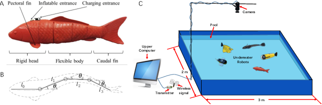 Figure 2 for Decentralized Circle Formation Control for Fish-like Robots in the Real-world via Reinforcement Learning