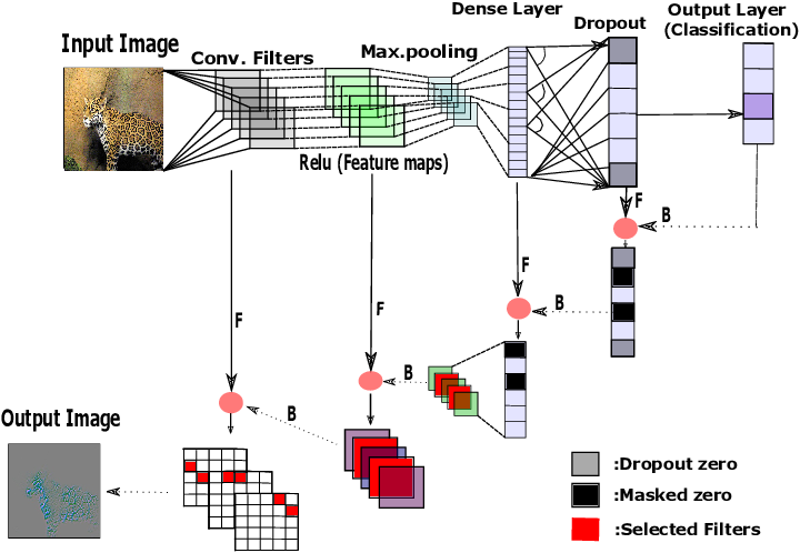 Figure 1 for A Forward-Backward Approach for Visualizing Information Flow in Deep Networks