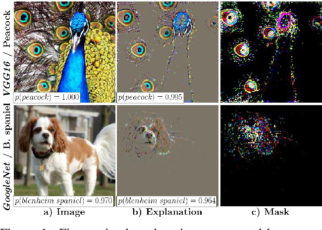 Figure 1 for Interpretable and Fine-Grained Visual Explanations for Convolutional Neural Networks