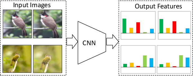 Figure 1 for Unsupervised Embedding Learning via Invariant and Spreading Instance Feature