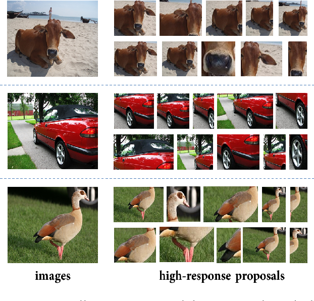 Figure 2 for Deep Self-Taught Learning for Weakly Supervised Object Localization