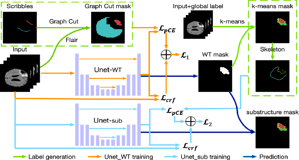 Figure 1 for Scribble-based Hierarchical Weakly Supervised Learning for Brain Tumor Segmentation