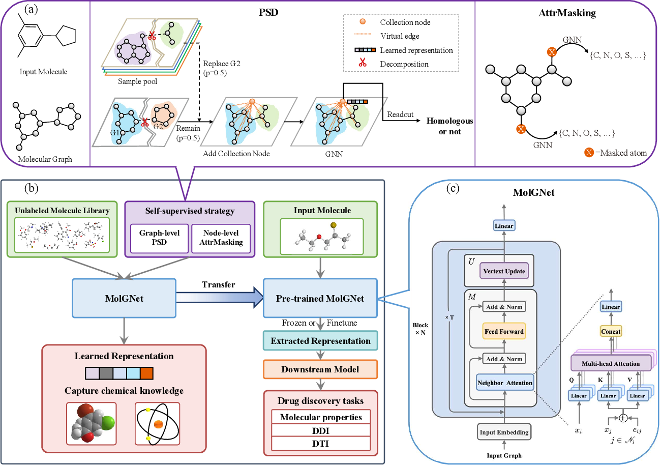 Figure 1 for Learn molecular representations from large-scale unlabeled molecules for drug discovery