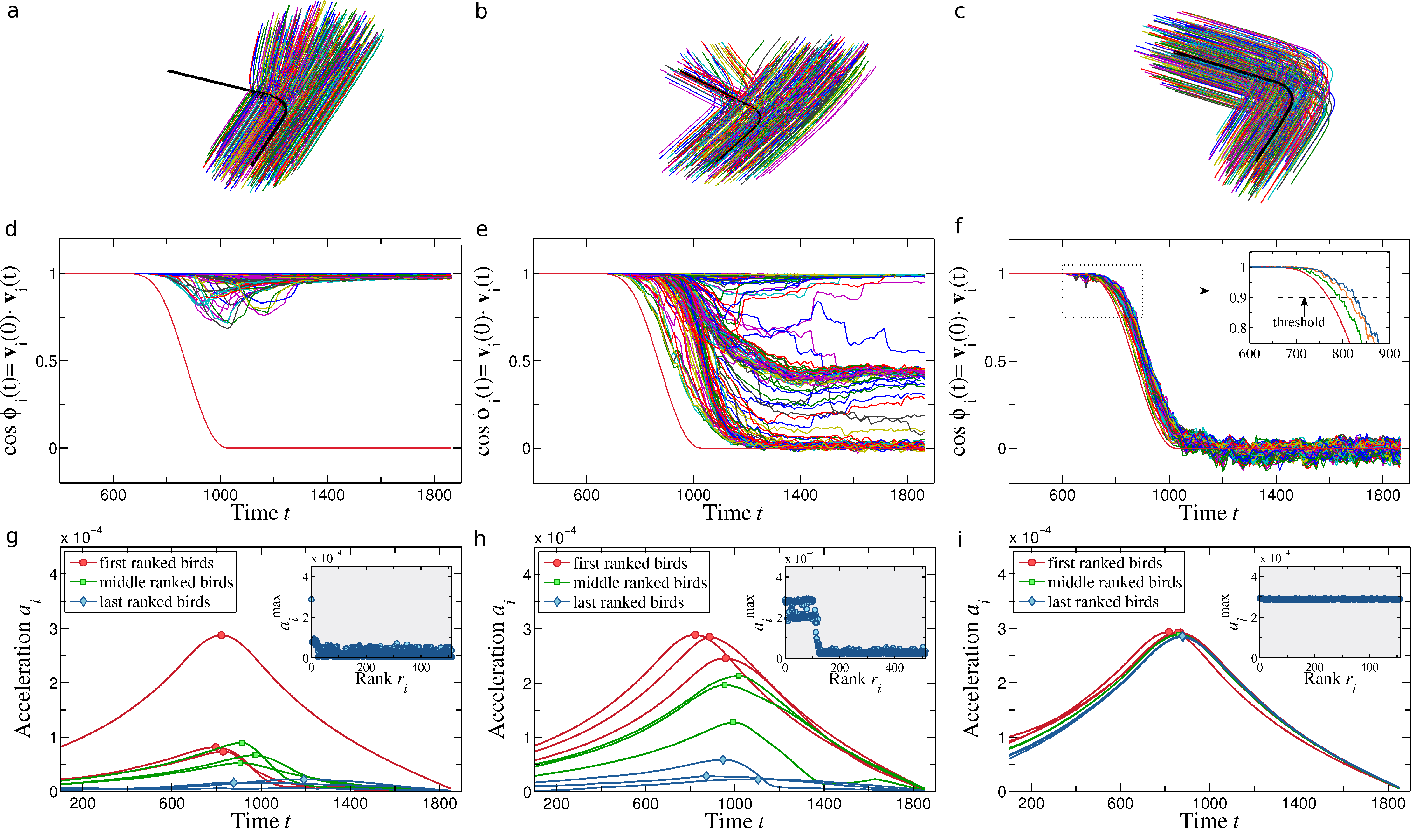 Figure 3 for Flocking and turning: a new model for self-organized collective motion