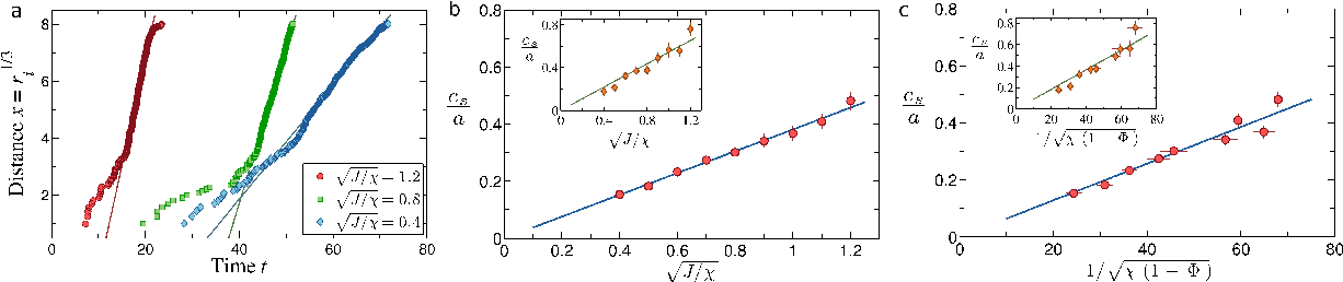 Figure 4 for Flocking and turning: a new model for self-organized collective motion