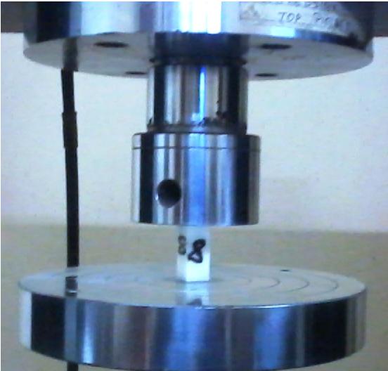Fig. 2 One specimen during the compression test