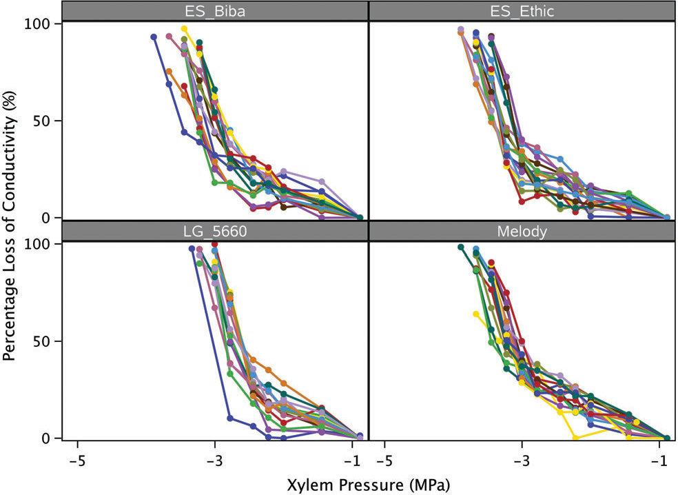 Intraspecific Variation In Embolism Resistance And Stem Anatomy