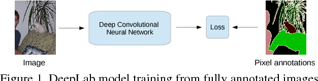 Figure 1 for Weakly- and Semi-Supervised Learning of a DCNN for Semantic Image Segmentation