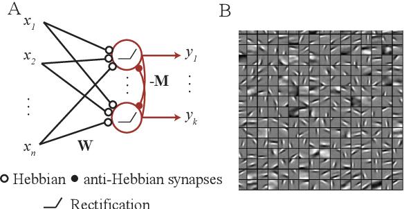 Figure 2 for Neuroscience-inspired online unsupervised learning algorithms
