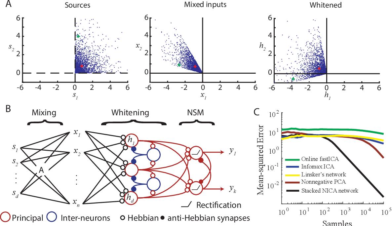 Figure 4 for Neuroscience-inspired online unsupervised learning algorithms