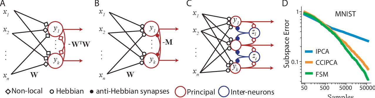 Figure 1 for Neuroscience-inspired online unsupervised learning algorithms